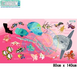 【OCEANARIUM】ドライタオル T11 Pink Mola & Reef fish identification dry towel 80cm x 140cm