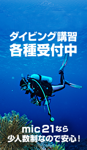 PADI 다이빙 강습 각종 접수중